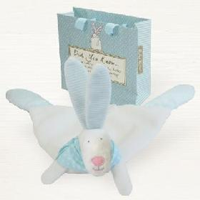 Rufus Rabbit Baby Boy Bag